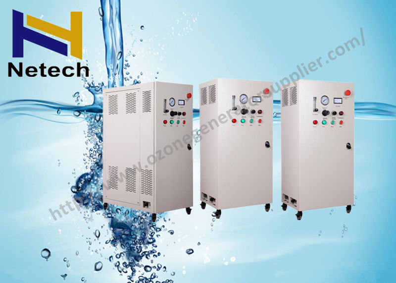10G - 50G Ozone clean Treatment Machine Water Ozone For Swimming Pool